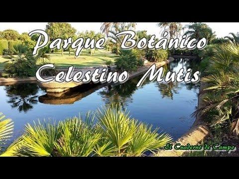 Parque botánico Celestino Mutis, La rábida, Huelva - YouTube