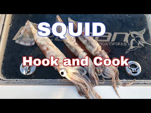 Squid: Hook And Cook! CALAMARI!