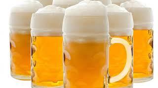 Zork - Ik ben Thijs en ik hou van bier