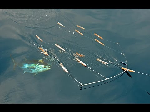 Bluefin Tuna Fishing at The Claw with SI Flexi-Bar Squid Bars