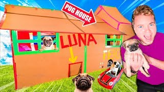 two-story-box-fort-dog-house-for-pug-puppy