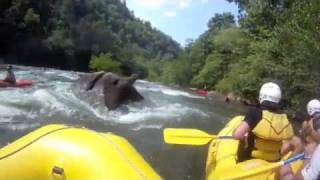Rafting the Middle Ocoee Part:2