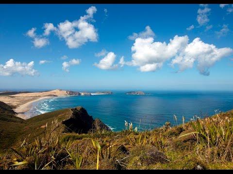 Cape Reinga and Ninety Mile Beach Tours.