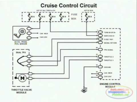 1999 Ford F250 Headlight Wiring Diagram Third Brake Light Cruise Control & - Youtube