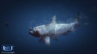 Repeat youtube video 【GTA5】サメと戦ってみた!