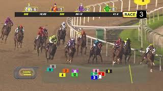 Vidéo de la course PMU RESTRICTED MAIDEN- 1100 M.