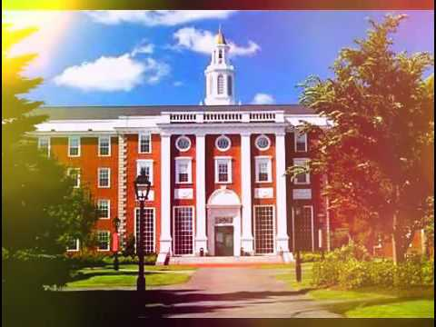 education in united states university