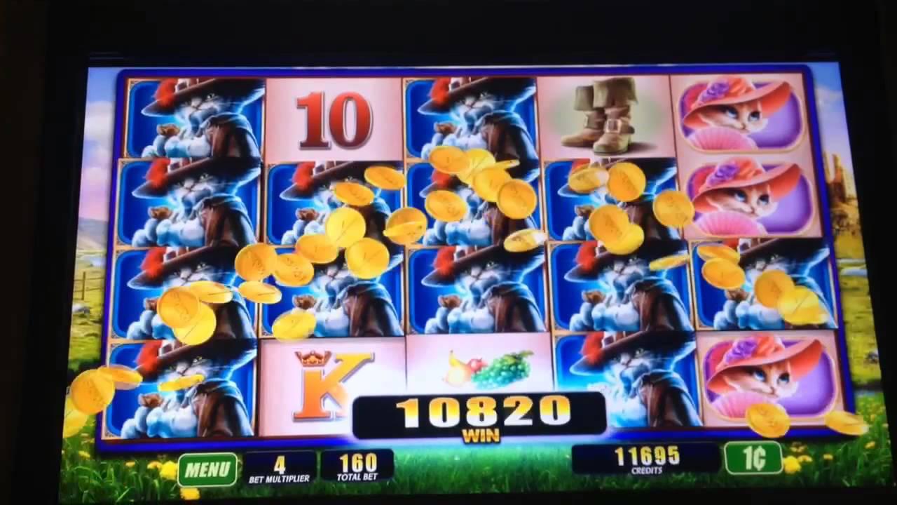 pch games slots big cats