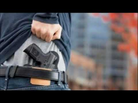 Fact Check: Here's How Many Americans Have Concealed Carry Permits