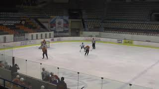 Хоккей ЛНХЛ Оптимист-Легион 22.11.2017 г. 1 пер. Пермь
