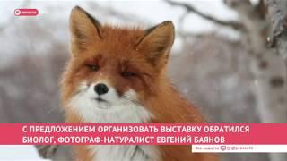 Новости дня 20.01.20