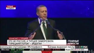 Эрдоган: это не Россия, а Турция заморозила «Турецкий поток»