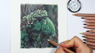 TIMELAPSE:  Frog n Moss