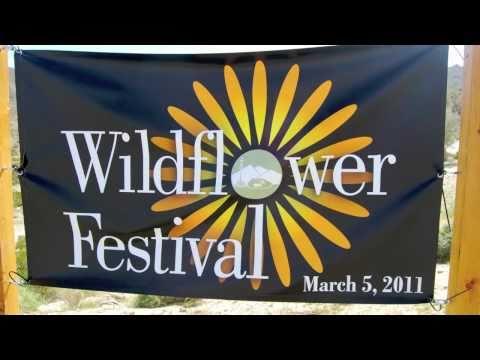 Wildflower Festival 2011 - Palm Desert, CA