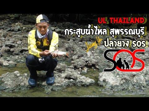สารคดีตกปลากระสูบน้ำไหล(UL)ด้วยปลายางsos