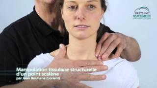 Manipulation structurelle du rachis cervico-dorsal en ostéopathie structurelle