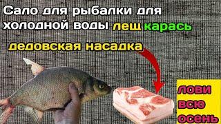 САЛО ДЛЯ РЫБАЛКИ Дедовский рецепт клева по холодной воде Рыболовная насадка для карася леща карпа