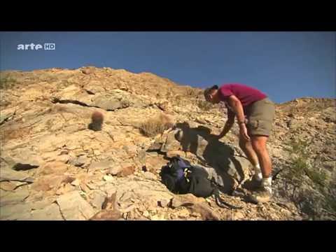 Curiosity Rover: Mission zum Mars (in HD)