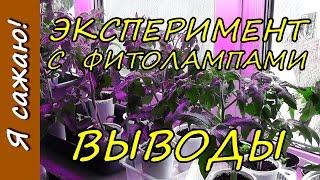 ФИТОЛАМПЫ. Результаты и ВЫВОДЫ по выращиванию рассады томатов. Я сажаю.
