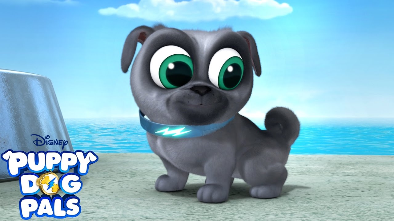 This Is How You Jump Music Video Puppy Dog Pals Disney Junior