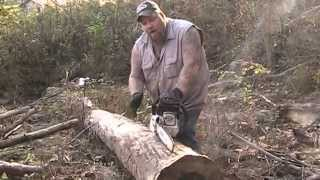 Cutting Boards From A Tree