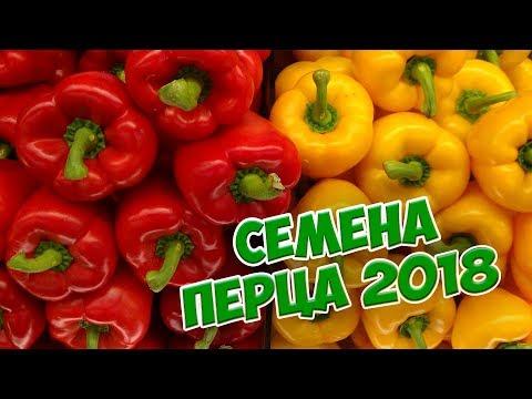 видео: СЕМЕНА ПЕРЦА 🌟 Новинки сортов перца 2018 🌟 Гавриш