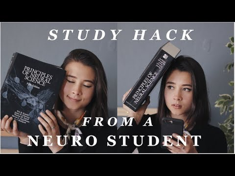 study hack from a neuroscience student (me)