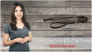 Braided Leather Dog Leash With Additional Handle - Leash & Pull Tab Combo - Review
