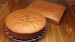 Tortenboden / Wiener Masse / Biskuitteig ganz leicht, locker und saftig/Pandispanya Kek/Cake