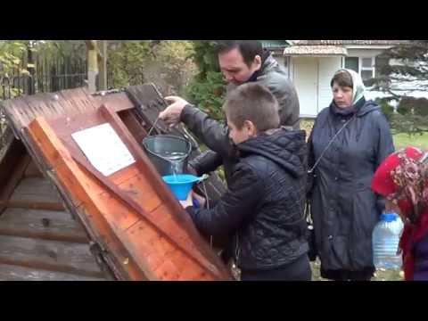 Дом для рыбаков и охотников в дер Новоселье Гдовского района .
