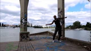 Freestyle at Donauinsel/Vienna - Riddim - Richvibes Record