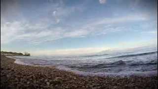 GoPro: Teddy on the beach