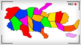 The New Map Of America