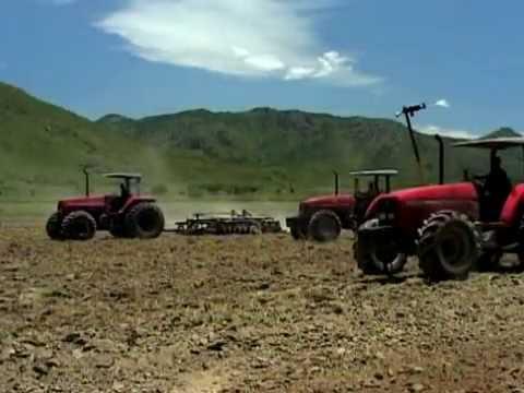 AGORA- Mitrelli Agriculture