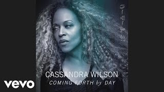 Cassandra Wilson - Don't Explain (Audio)