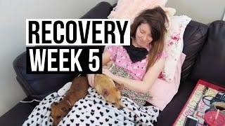 5 Weeks Post Hysterectomy Surgery (7.14.16)