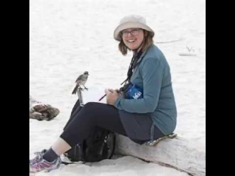 This Birding Life, Episode 71: Catherine Hamilton, Bird Artist for Conservation