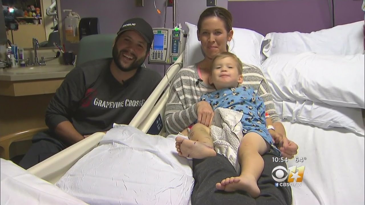 2-Year-Old Recovering From Rattlesnake Bite