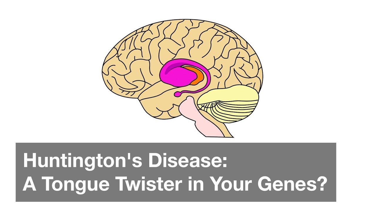 understanding the genetic disease huntingtons disease