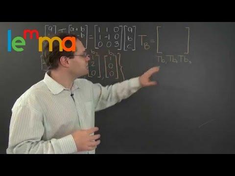 Linear Algebra 19k: Matrix Representation of a Linear Transformation - Vectors in ℝⁿ