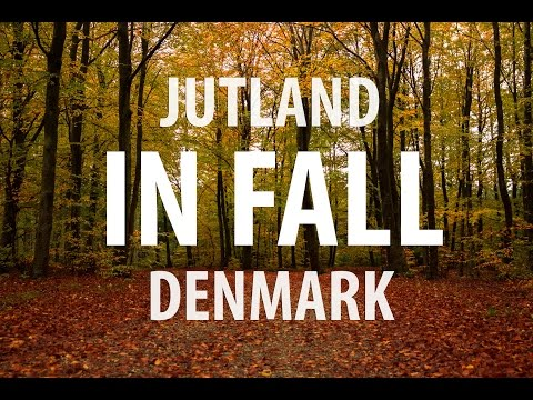 Jutland in Fall - The Danish Road Trip