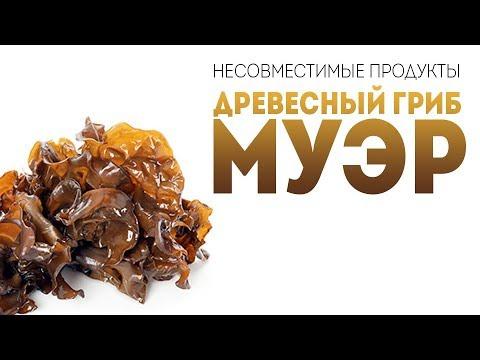 Сушеные грибы - белые шиитаке древесные - как готовить