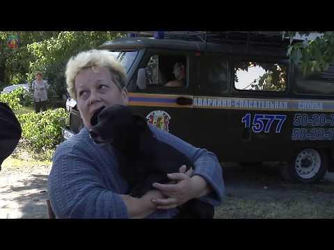 lgikvideo: устранение последствий урагана