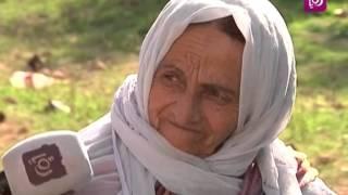 حلوة يا دنيا - بلدة الشيوخ - فلسطين