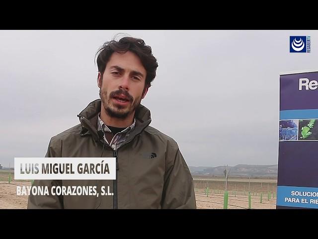 Pistacho · Riego por goteo con DripNET® PC en pistacho (Toledo)