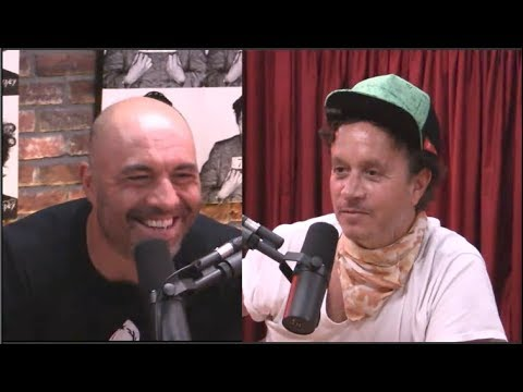 Pauly Shore on Hanging Out with Trump at the Playboy Mansion   Joe Rogan