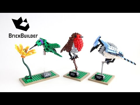 Lego Ideas 21301 Birds - Lego Speed Build