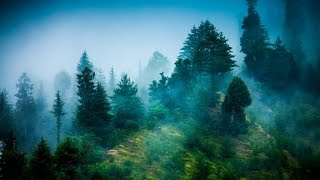 6 Hour Reiki Meditation Music: Calming Music, Relaxing Music, Soothing Music, Soft Music ☯071A