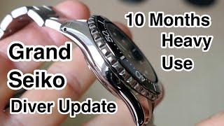 Grand Seiko Titanium Heavy Use - SUPER WATCH!