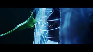 藍井エイル 『アンリアル トリップ』Music Video